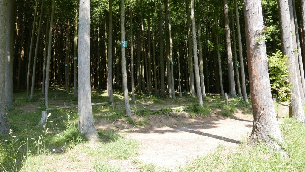 四尾連湖グリーンサイト